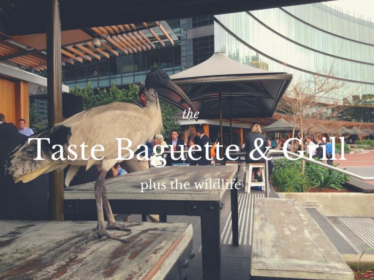 Taste Baguette & Grill